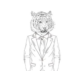 Sh tijger image